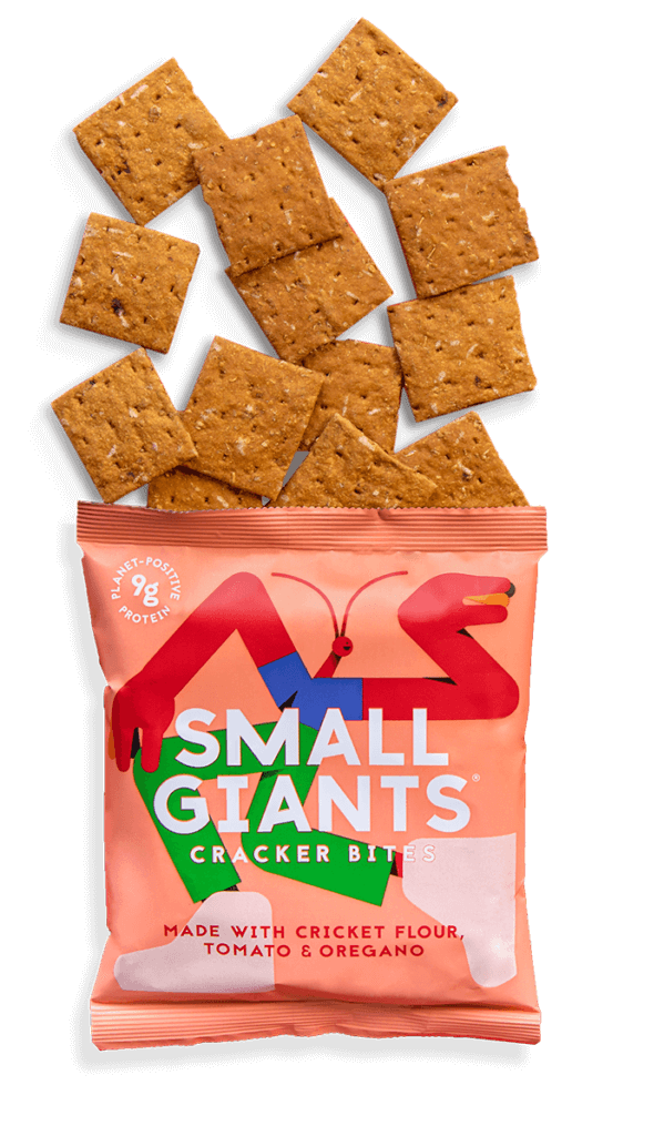 Small Giants Cricket Cracker Bites Tomato & Oregano are extremely tasty, very crunchy and similar to a crisps or chips